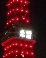 希望の東京タワーIMG_20210211_194346_056.jpg