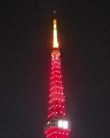 赤い東京タワーIMG_20210211_194346_066.jpg
